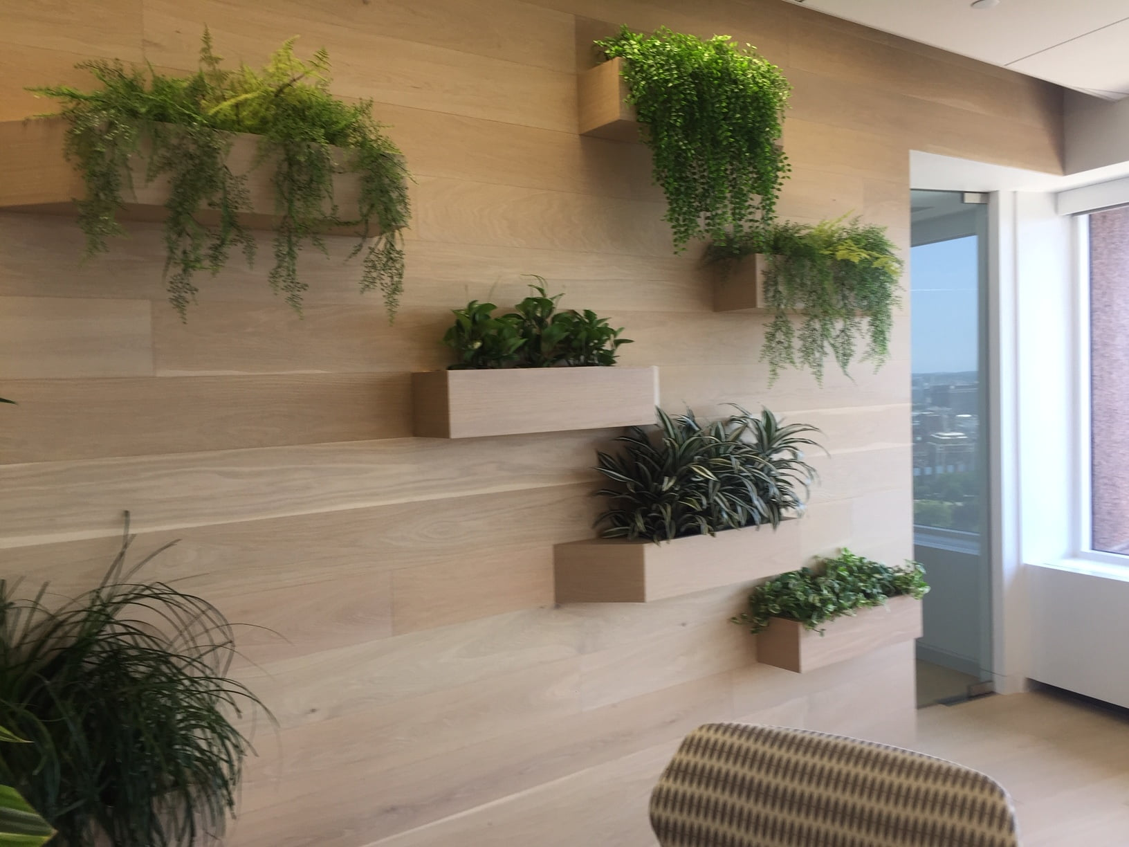 Social Distancing Barriers using Interior office Plants & Planters