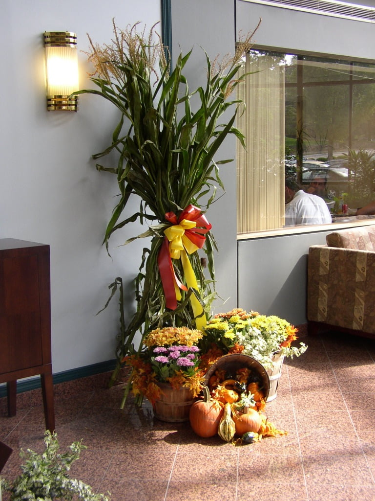 Fall/ Autumn Decoration for Corporate offices