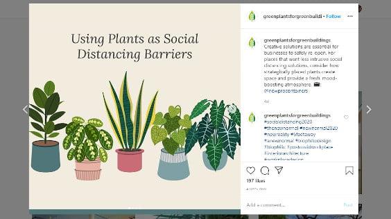 Social Distancing Using Live PLants