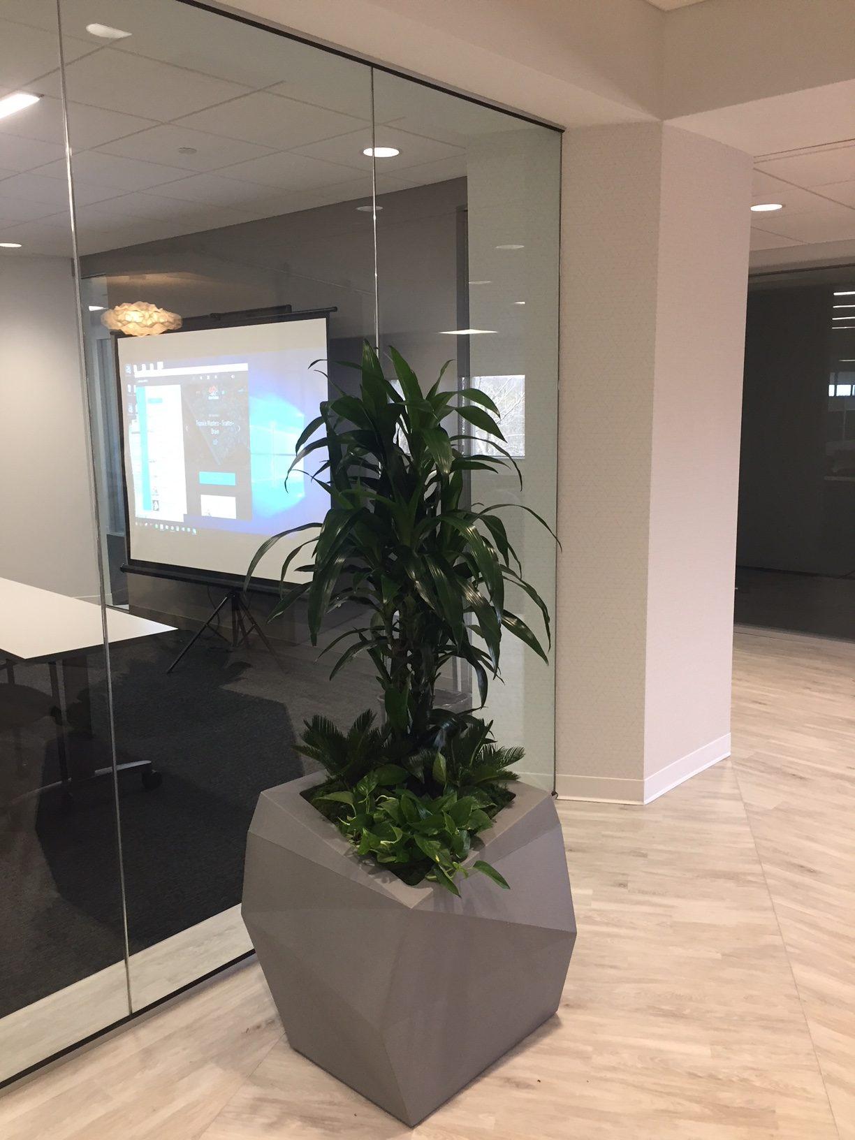 Peabody MA Jaguar / Land rover Showroom by Plantscape Designs