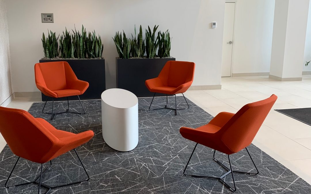 Office Plant Services Design Care Installation by Plantscape Designs Inc Burlington, MA