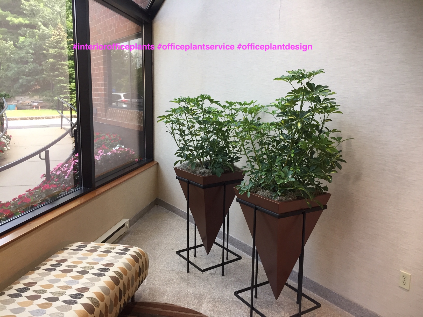Social- Distancing- Barriers- using -Interior- office -Plants- & Planters-